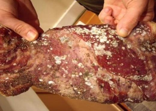 Policia konfiskon mish i cili po hynte ilegalisht në Kosovë