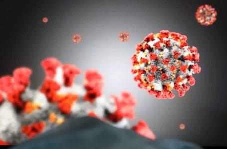 Shtatë të vdekur dhe 591 raste të reja me koronavirus në Kosovë