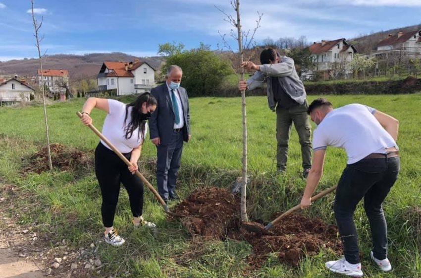 """""""Dita e Tokës"""" me aktivitete të ndryshme, Muharremaj mbjell drunjë dekorativ"""